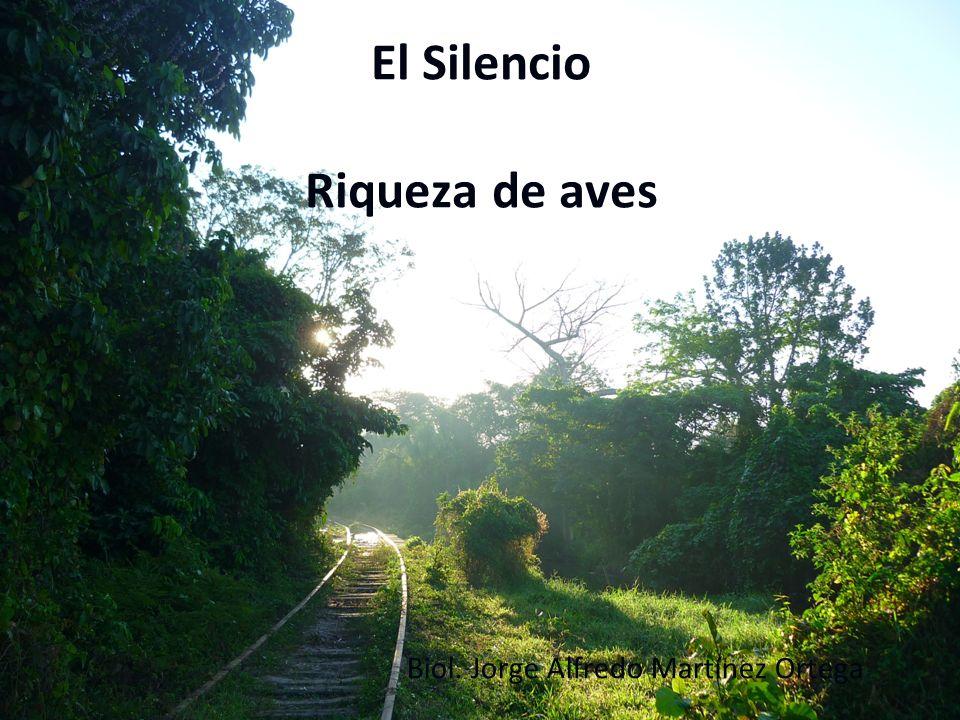 El Silencio Riqueza de aves Biol. Jorge Alfredo Martínez Ortega