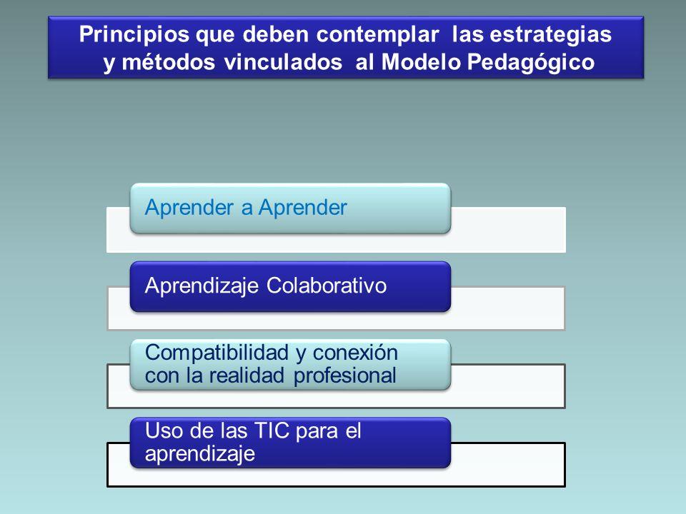 Aprender a AprenderAprendizaje Colaborativo Compatibilidad y conexión con la realidad profesional Uso de las TIC para el aprendizaje Principios que de