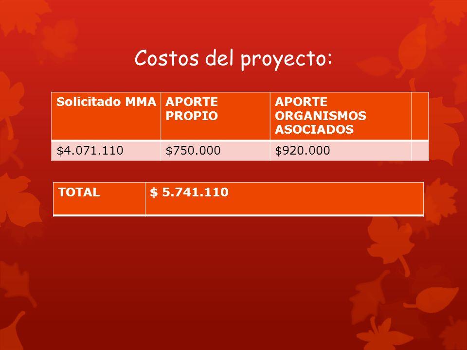 Costos del proyecto: Solicitado MMAAPORTE PROPIO APORTE ORGANISMOS ASOCIADOS $4.071.110$750.000$920.000 TOTAL$ 5.741.110