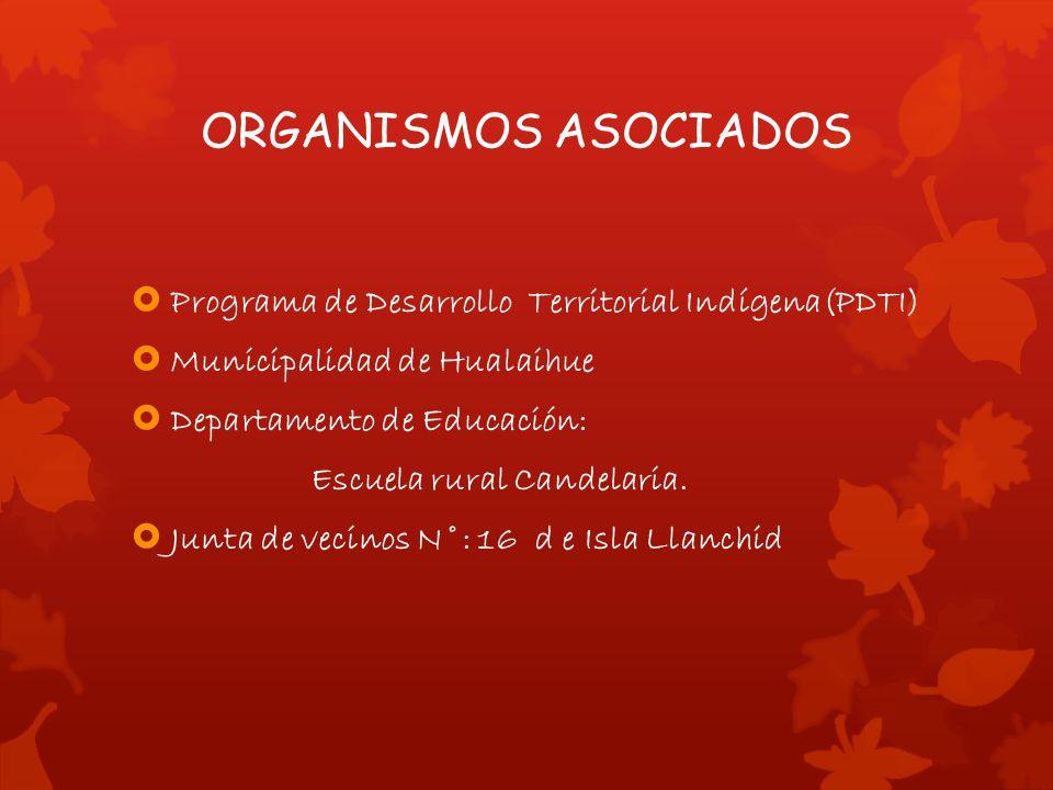 ORGANISMOS ASOCIADOS Programa de Desarrollo Territorial Indígena(PDTI) Municipalidad de Hualaihue Departamento de Educación: Escuela rural Candelaria.