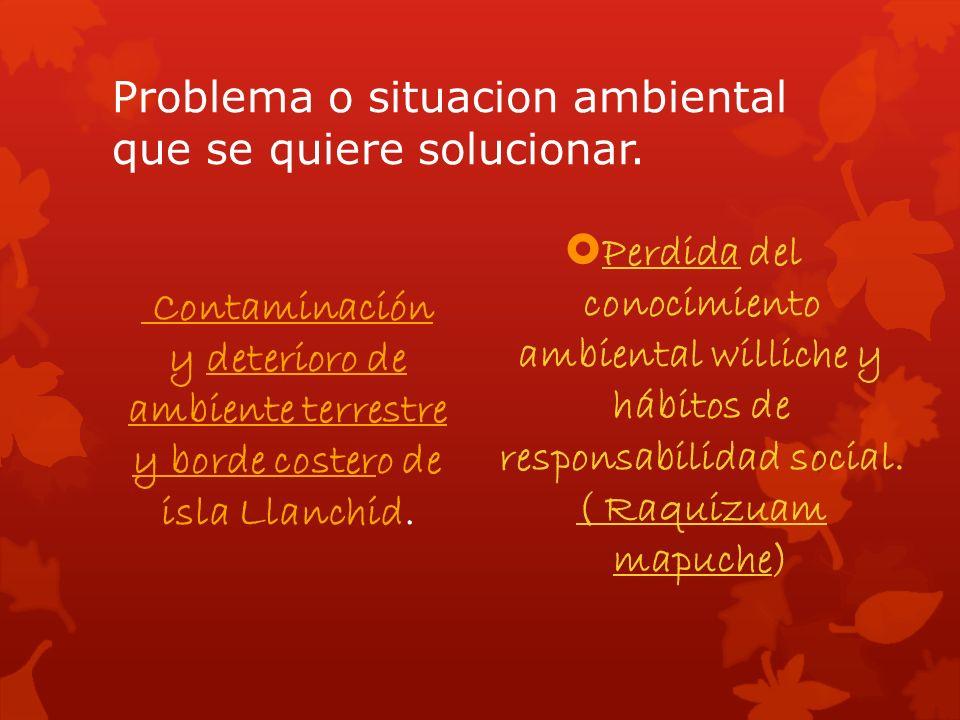 Problema o situacion ambiental que se quiere solucionar.