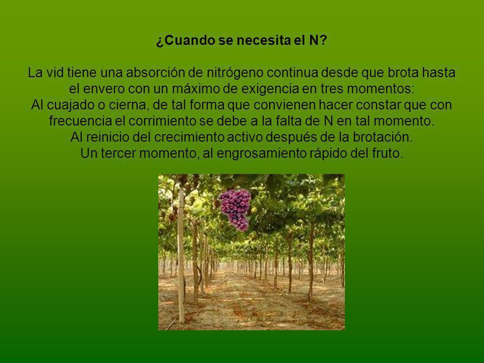 La deficiencia o carencia de nitrógeno produce: Escaso desarrollo de la planta, reduce el crecimiento y la producción.