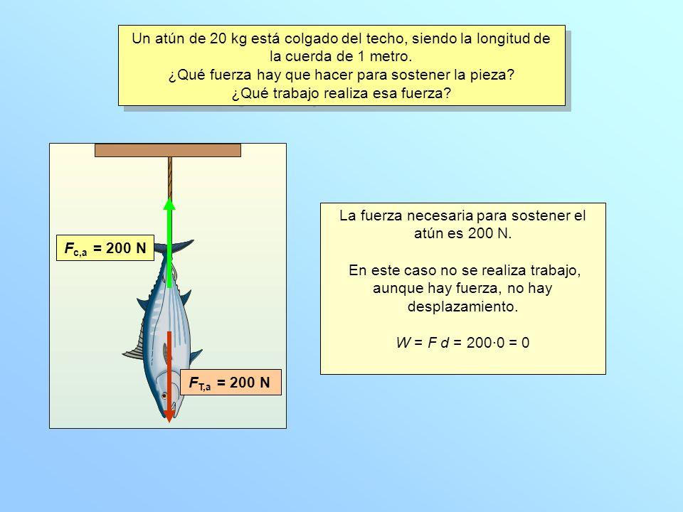 La fuerza necesaria para sostener el atún es 200 N.