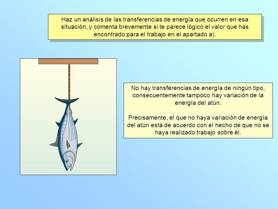 No hay transferencias de energía de ningún tipo, consecuentemente tampoco hay variación de la energía del atún.