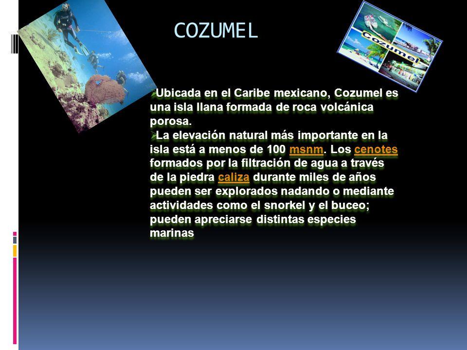 COZUMEL Ubicada en el Caribe mexicano, Cozumel es una isla llana formada de roca volcánica porosa.