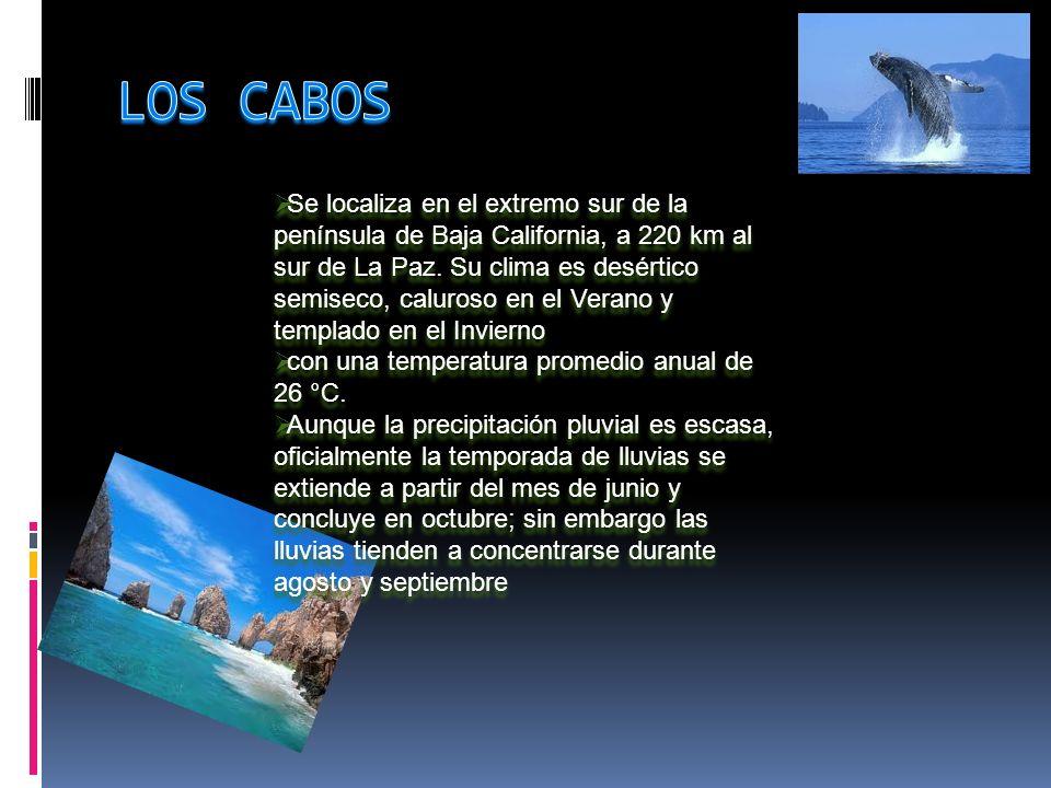 Se localiza en el extremo sur de la península de Baja California, a 220 km al sur de La Paz.
