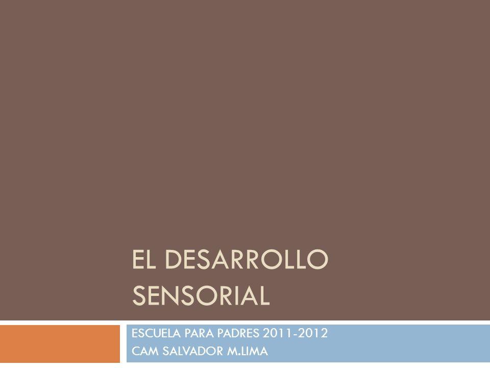 EL DESARROLLO SENSORIAL ESCUELA PARA PADRES 2011-2012 CAM SALVADOR M.LIMA