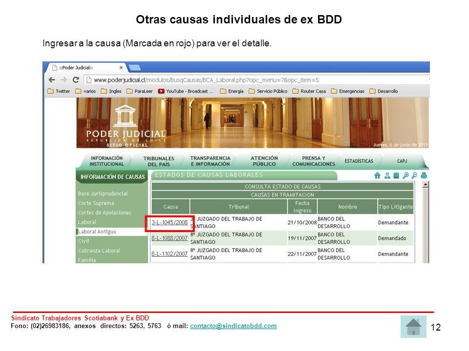 12 Otras causas individuales de ex BDD Ingresar a la causa (Marcada en rojo) para ver el detalle.