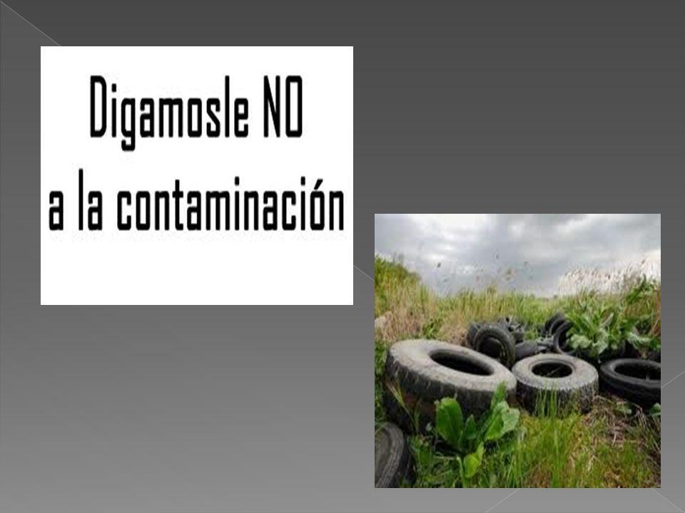 Ustedes deciden como quieren vivir: en un mundo Lleno de contaminación o un mundo libre De contaminación, y enfermedades.