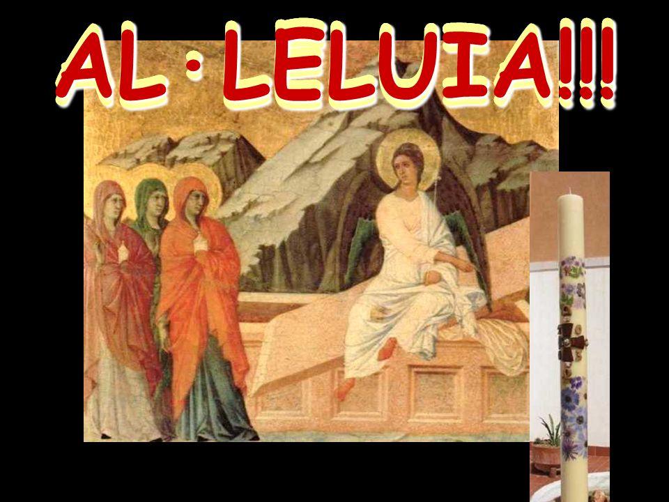 Las mujeres, pioneras de la FE, buscan a Jesús.