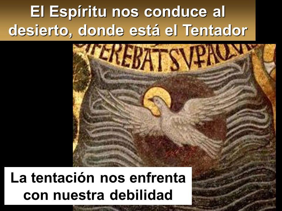 Mt 4,1-11 En aquel tiempo, Jesús fue llevado al desierto por el Espíritu para ser tentado por el diablo. Desierto de Judá