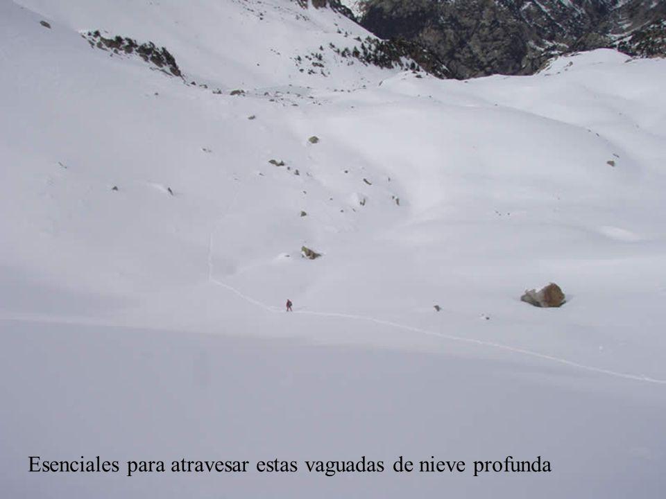 Esenciales para atravesar estas vaguadas de nieve profunda