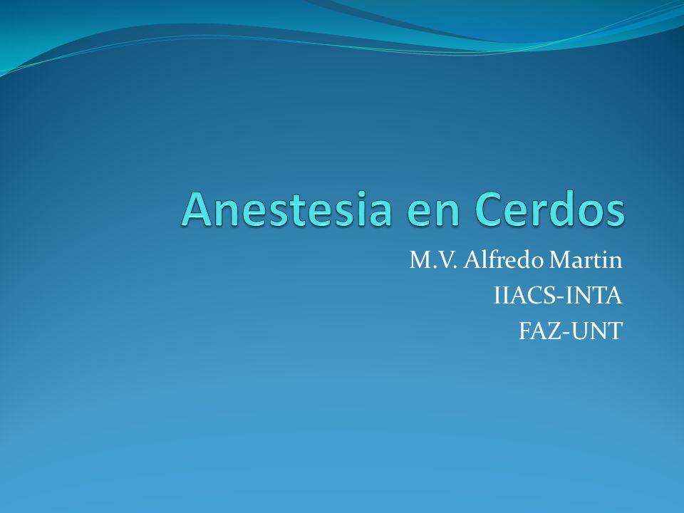 Drogas de uso más común en Cerdos (mg/kg) * 0,4 mg de Fentanilo con 20 mg de Droperidol por ml de solución, para neuroleptoanalgesia.