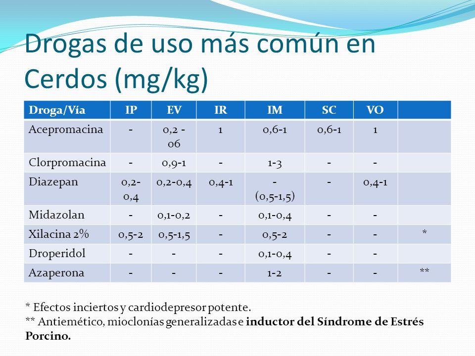 Drogas de uso más común en Cerdos (mg/kg) Droga/VíaIPEVIRIMSCVO Acepromacina-0,2 - 06 10,6-1 1 Clorpromacina-0,9-1-1-3-- Diazepan0,2- 0,4 0,4-1- (0,5-1,5) -0,4-1 Midazolan-0,1-0,2-0,1-0,4-- Xilacina 2%0,5-20,5-1,5-0,5-2--* Droperidol---0,1-0,4-- Azaperona---1-2--** * Efectos inciertos y cardiodepresor potente.