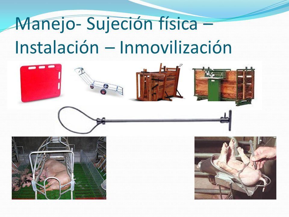 Manejo- Sujeción física – Instalación – Inmovilización