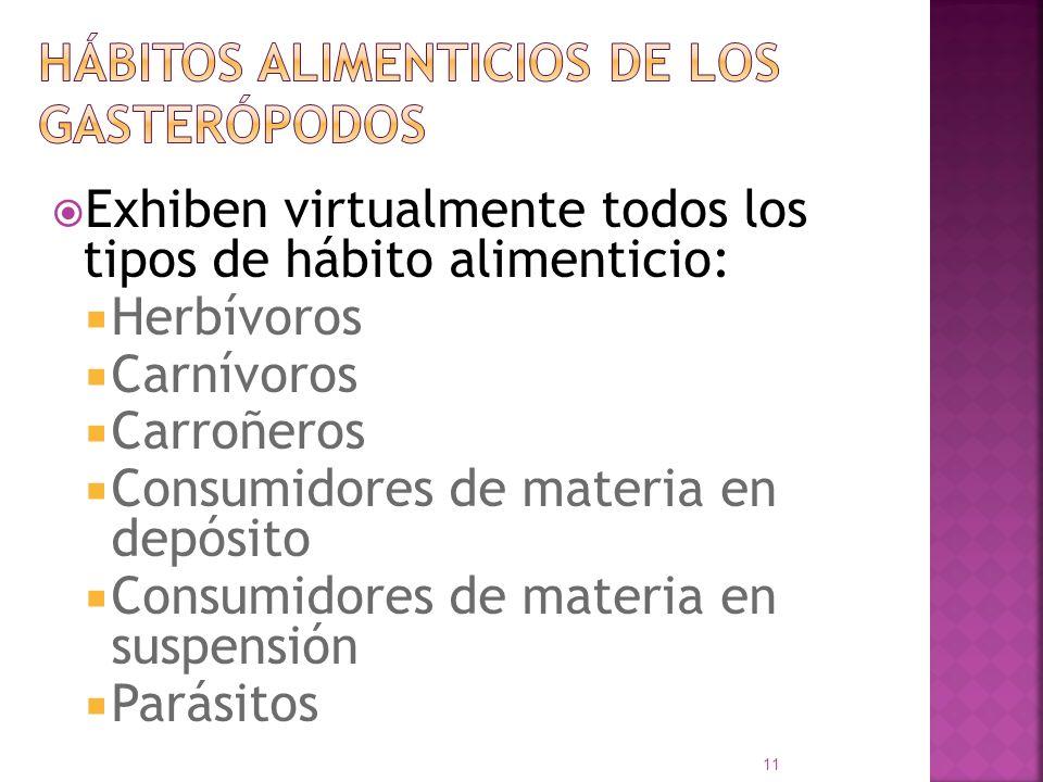 Exhiben virtualmente todos los tipos de hábito alimenticio: Herbívoros Carnívoros Carroñeros Consumidores de materia en depósito Consumidores de mater