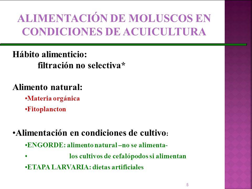 ALIMENTACIÓN DE MOLUSCOS EN CONDICIONES DE ACUICULTURA Hábito alimenticio: filtración no selectiva* Alimento natural: Materia orgánica Fitoplancton Al