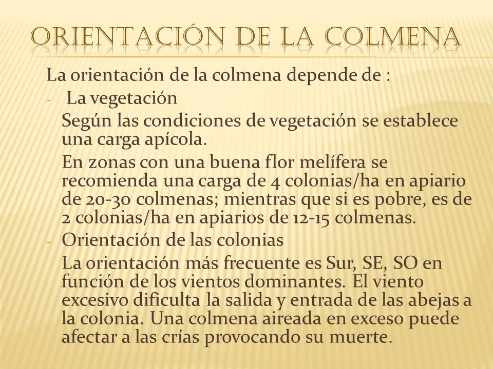 La orientación de la colmena depende de : - La vegetación Según las condiciones de vegetación se establece una carga apícola. En zonas con una buena f