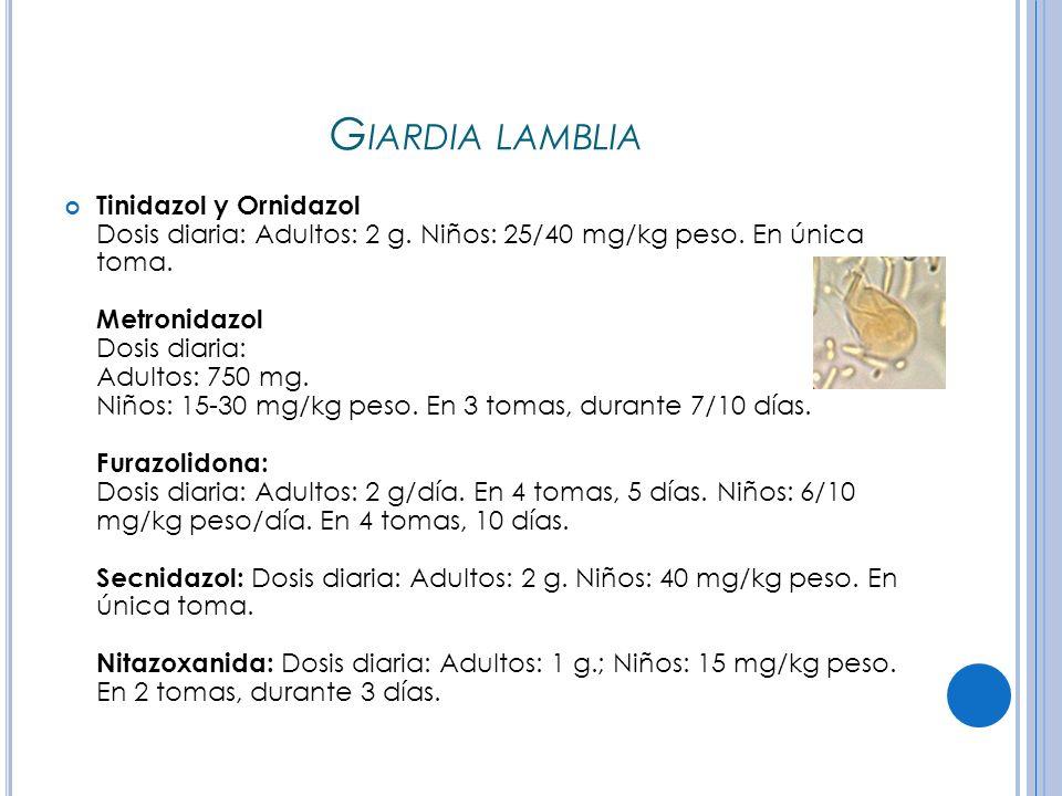 G IARDIA LAMBLIA Tinidazol y Ornidazol Dosis diaria: Adultos: 2 g.