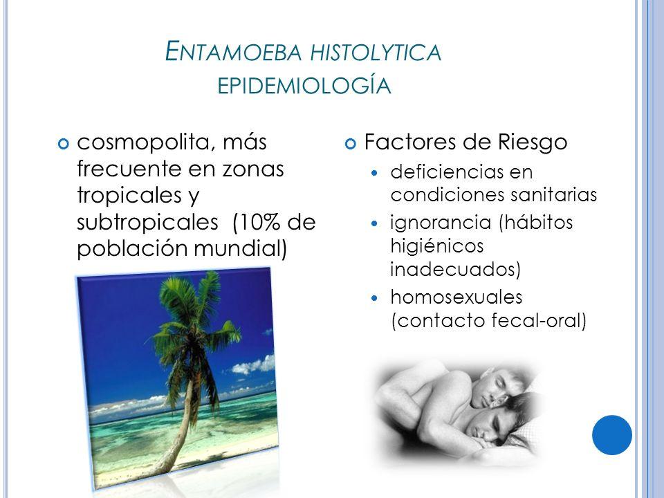 E NTAMOEBA HISTOLYTICA EPIDEMIOLOGÍA cosmopolita, más frecuente en zonas tropicales y subtropicales (10% de población mundial) Factores de Riesgo deficiencias en condiciones sanitarias ignorancia (hábitos higiénicos inadecuados) homosexuales (contacto fecal-oral)