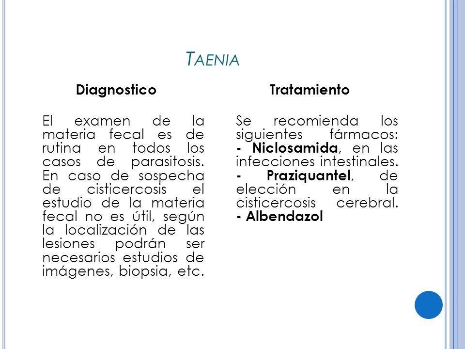 T AENIA Diagnostico El examen de la materia fecal es de rutina en todos los casos de parasitosis.