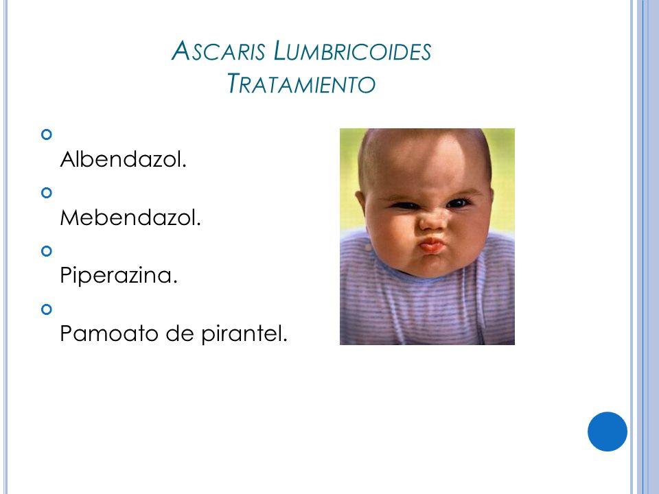 A SCARIS L UMBRICOIDES T RATAMIENTO Albendazol. Mebendazol. Piperazina. Pamoato de pirantel.