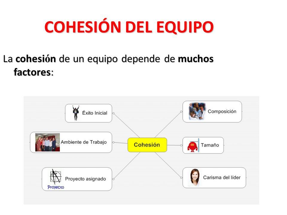 COHESIÓN DEL EQUIPO La cohesi ó n de un equipo depende de muchos factores: