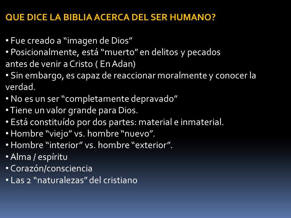 QUE DICE LA BIBLIA ACERCA DEL SER HUMANO? Fue creado a imagen de Dios Posicionalmente, está muerto en delitos y pecados antes de venir a Cristo ( En A