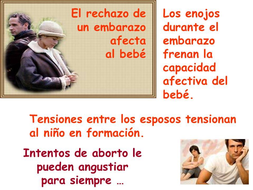 Los enojos durante el embarazo frenan la capacidad afectiva del bebé. El rechazo de un embarazo afecta al bebé Tensiones entre los esposos tensionan a