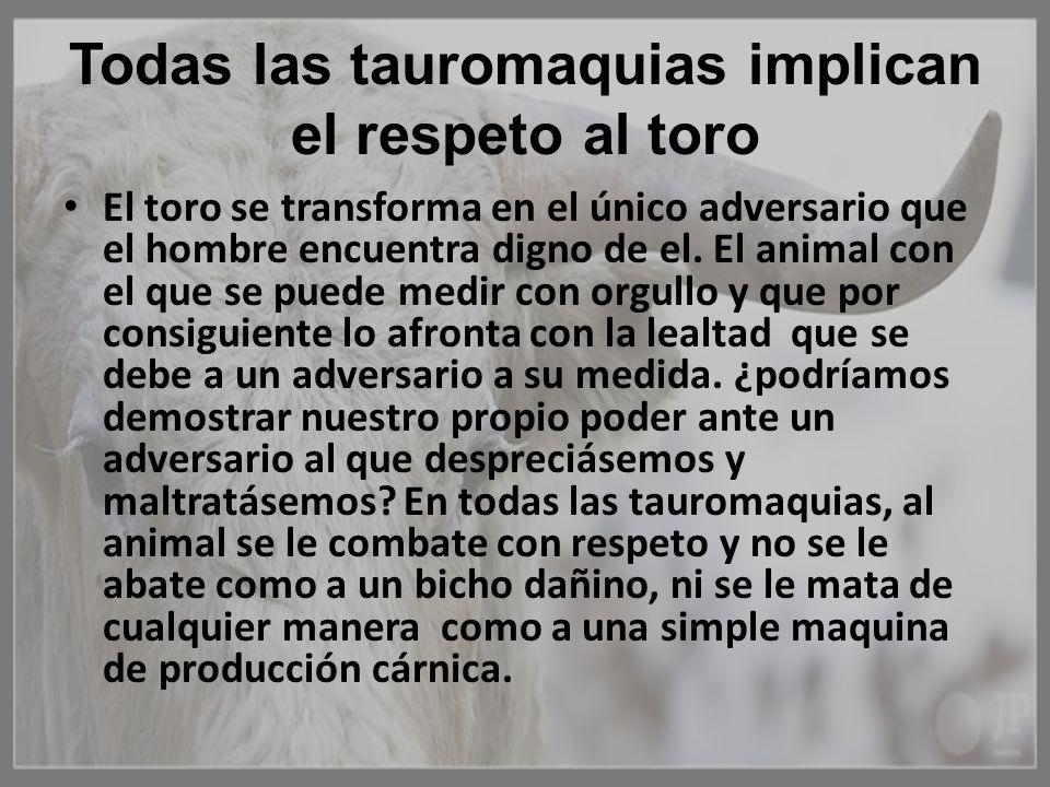 Todas las tauromaquias implican el respeto al toro El toro se transforma en el único adversario que el hombre encuentra digno de el. El animal con el