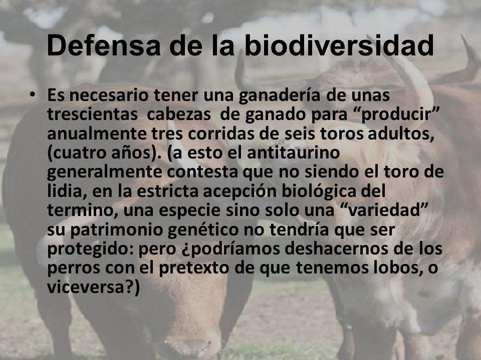 Defensa de la biodiversidad Es necesario tener una ganadería de unas trescientas cabezas de ganado para producir anualmente tres corridas de seis toro