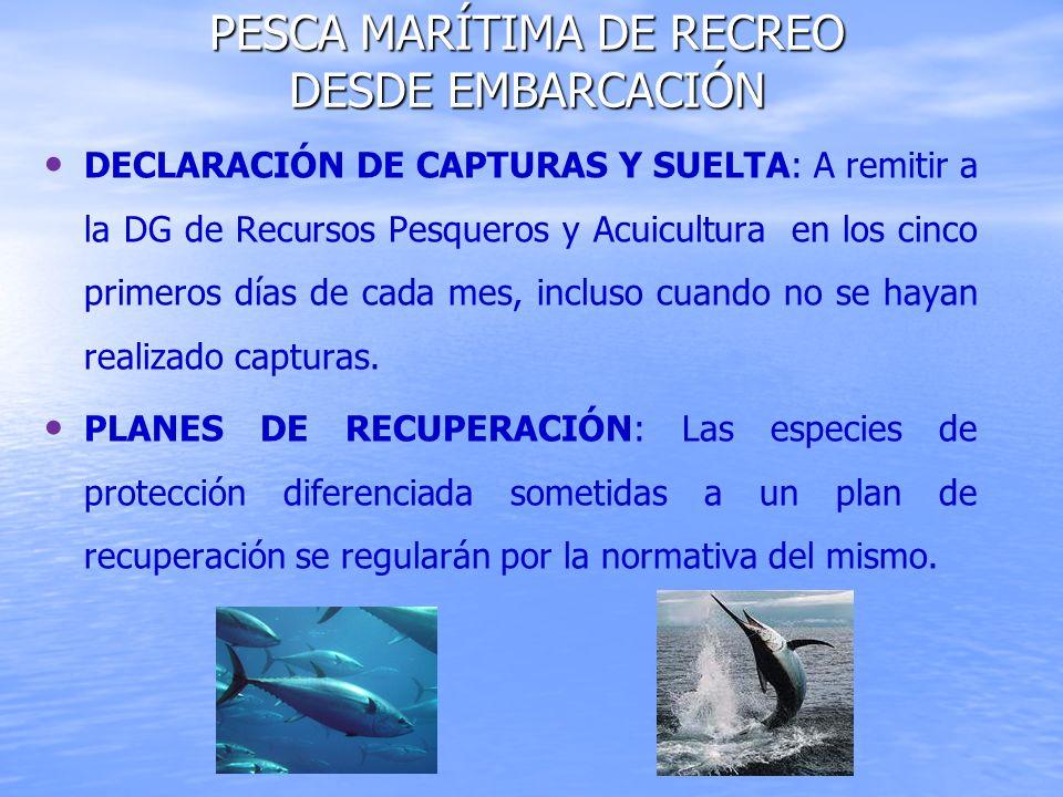 DECLARACIÓN DE CAPTURAS Y SUELTA: A remitir a la DG de Recursos Pesqueros y Acuicultura en los cinco primeros días de cada mes, incluso cuando no se h