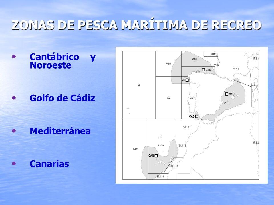 AUTORIZACIONES Y OBLIGACIONES AUTORIZACIONES Y OBLIGACIONES EN LA PESCA MARÍTIMA DE RECREO: – – El Estado tiene la competencia en aguas exteriores – –Las Comunidades Autónomas en sus respectivas aguas interiores.