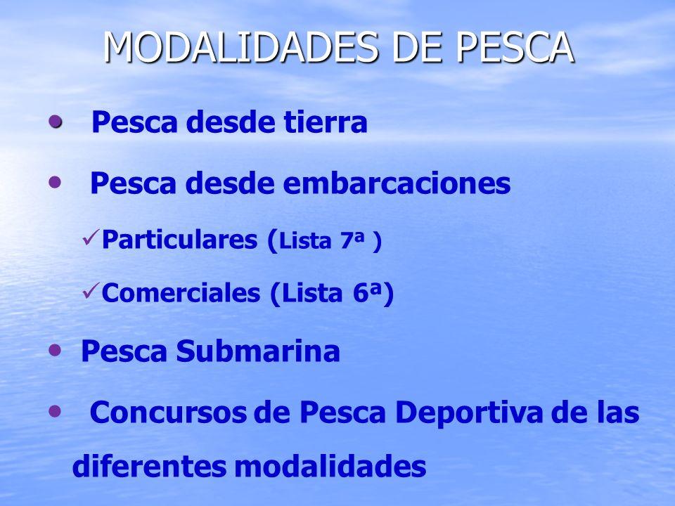 MODALIDADES DE PESCA Pesca desde tierra Pesca desde embarcaciones Particulares ( Lista 7ª ) Comerciales (Lista 6ª) Pesca Submarina Concursos de Pesca