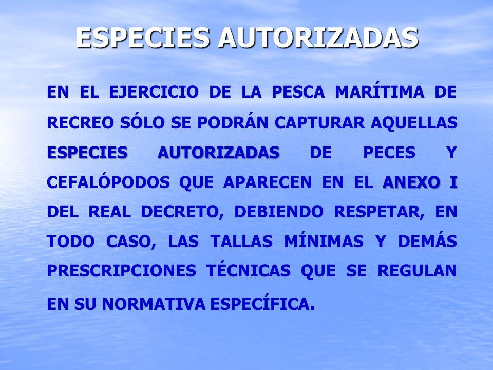 ESPECIES AUTORIZADAS ESPECIES AUTORIZADAS ANEXO I EN EL EJERCICIO DE LA PESCA MARÍTIMA DE RECREO SÓLO SE PODRÁN CAPTURAR AQUELLAS ESPECIES AUTORIZADAS