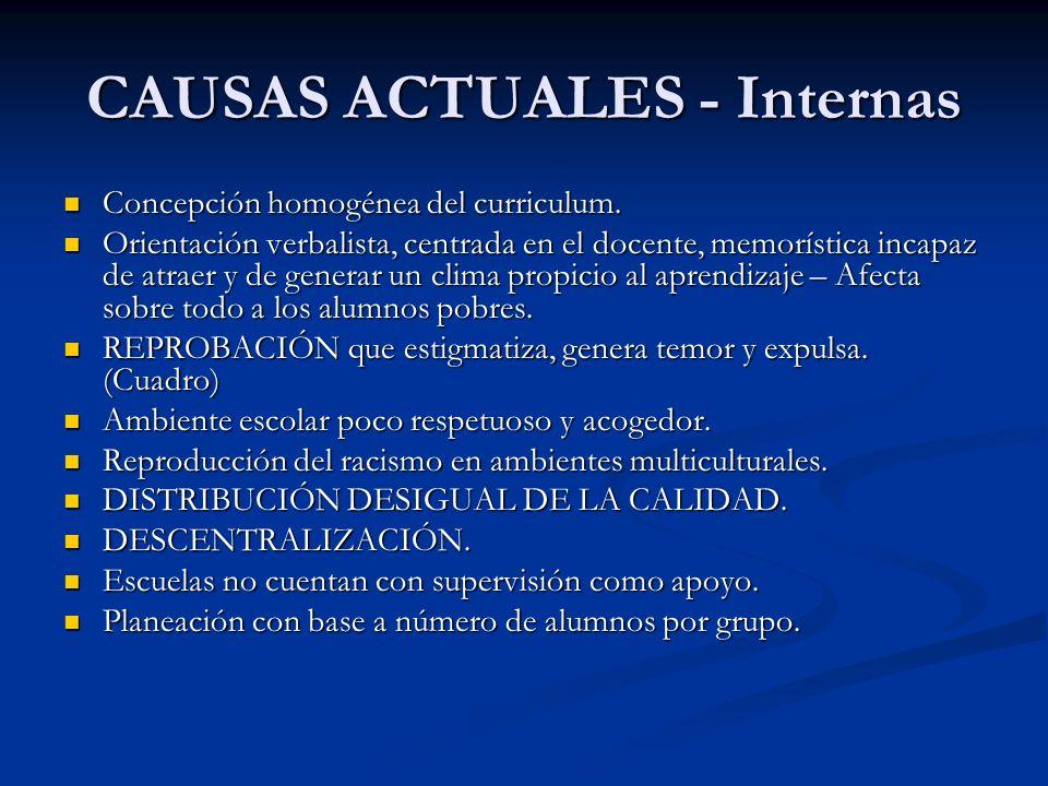 CAUSAS ACTUALES - Internas Concepción homogénea del curriculum.