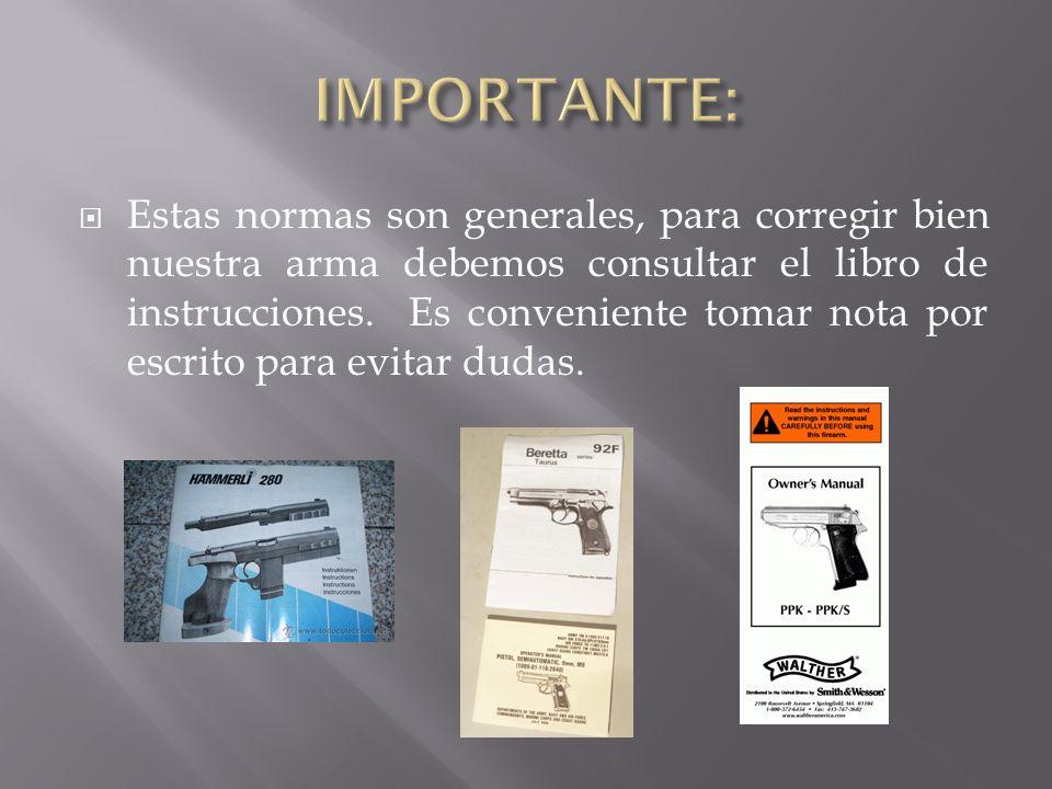 Estas normas son generales, para corregir bien nuestra arma debemos consultar el libro de instrucciones. Es conveniente tomar nota por escrito para ev