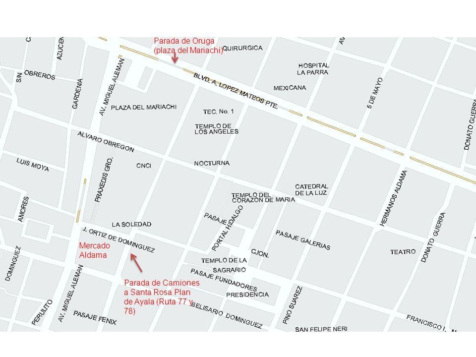 Parada de Oruga (plaza del Mariachi) Parada de Camiones a Santa Rosa Plan de Ayala (Ruta 77 y 78) Mercado Aldama