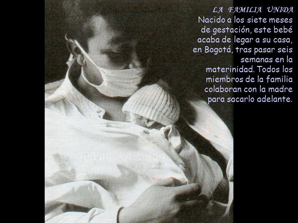 LA FAMILIA UNIDA Nacido a los siete meses de gestación, este bebé acaba de legar a su casa, en Bogotá, tras pasar seis semanas en la materinidad. Todo