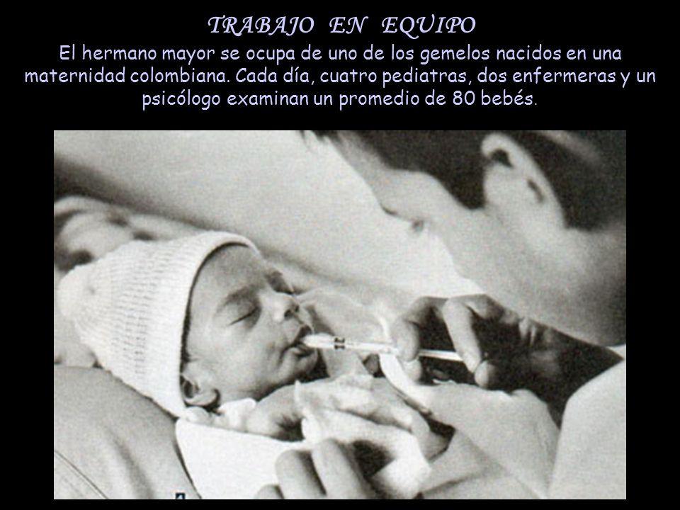 TRABAJO EN EQUIPO El hermano mayor se ocupa de uno de los gemelos nacidos en una maternidad colombiana. Cada día, cuatro pediatras, dos enfermeras y u