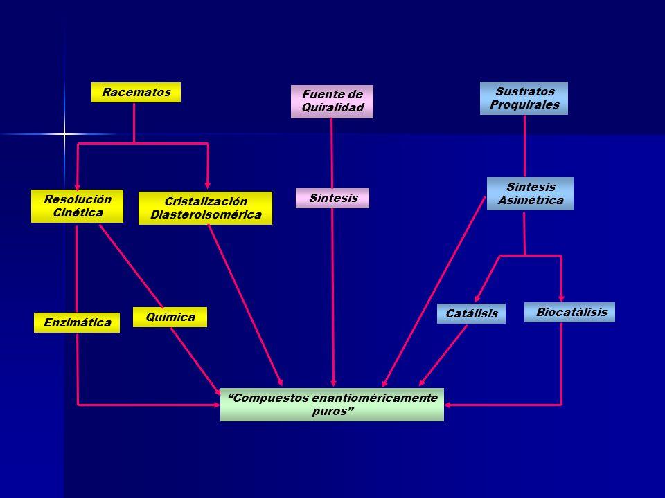 Enzimática Racematos Resolución Cinética Cristalización Diasteroisomérica Química Fuente de Quiralidad Sustratos Proquirales Síntesis Asimétrica Bioca