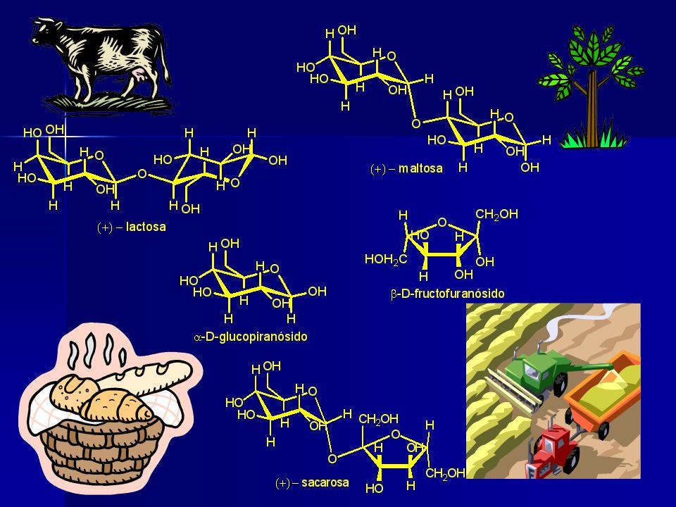 Industria Farmoquímica y Farmacéutica Ambas industrias están sujetas a una variedad de leyes y reglamentos respecto a las patentes, las pruebas y la comercialización de los fármacos.