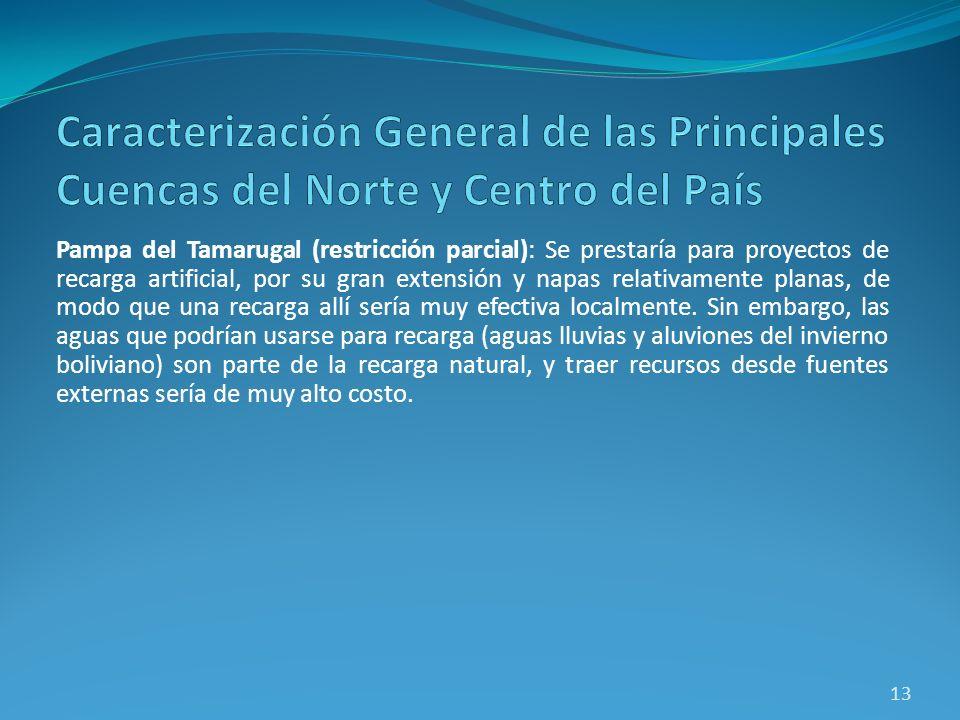 Pampa del Tamarugal (restricción parcial): Se prestaría para proyectos de recarga artificial, por su gran extensión y napas relativamente planas, de m
