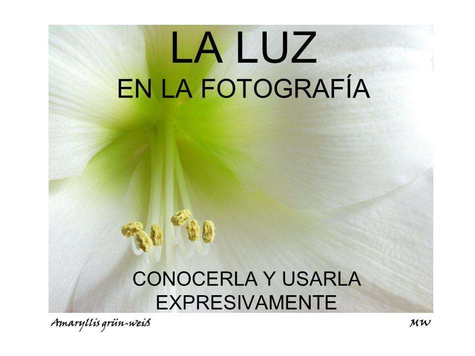 LA LUZ EN LA FOTOGRAFÍA CONOCERLA Y USARLA EXPRESIVAMENTE