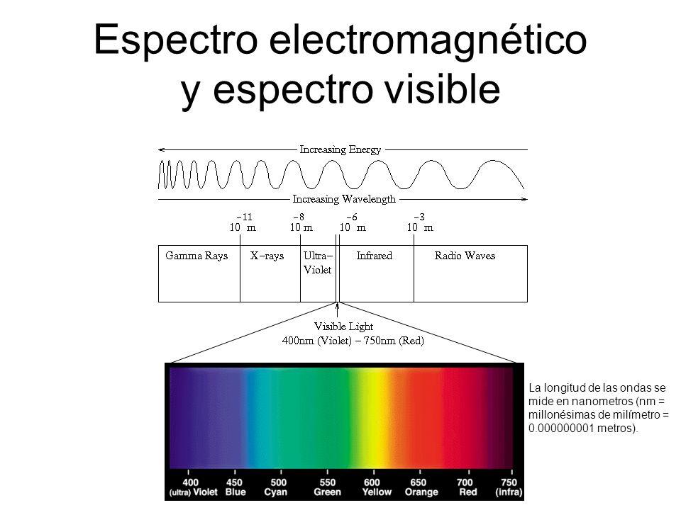 Espectro electromagnético y espectro visible La longitud de las ondas se mide en nanometros (nm = millonésimas de milímetro = 0.000000001 metros).