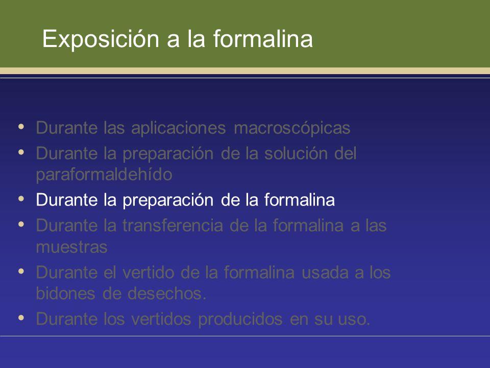 Exposición a la formalina Durante las aplicaciones macroscópicas Durante la preparación de la solución del paraformaldehído Durante la preparación de