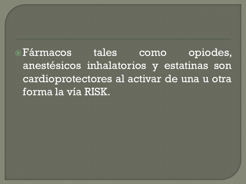 Fármacos tales como opiodes, anestésicos inhalatorios y estatinas son cardioprotectores al activar de una u otra forma la vía RISK.