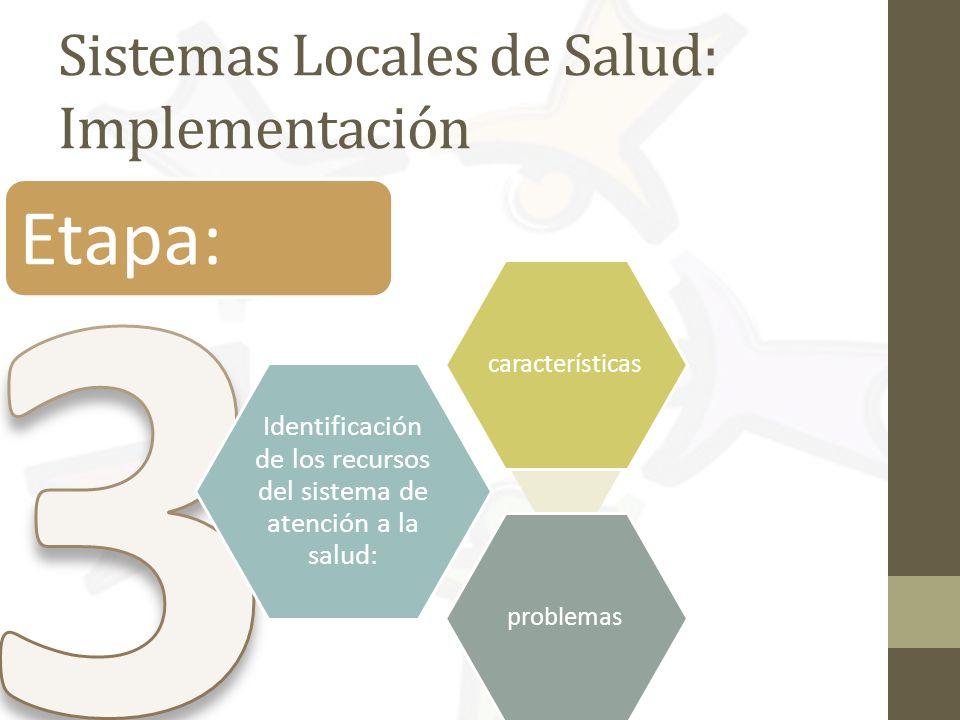Sistemas Locales de Salud: Implementación Etapa: Identificación de los recursos del sistema de atención a la salud: característicasproblemas