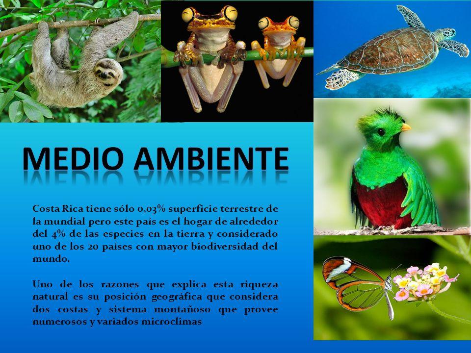 Costa Rica tiene sólo 0,03% superficie terrestre de la mundial pero este país es el hogar de alrededor del 4% de las especies en la tierra y considerado uno de los 20 países con mayor biodiversidad del mundo.