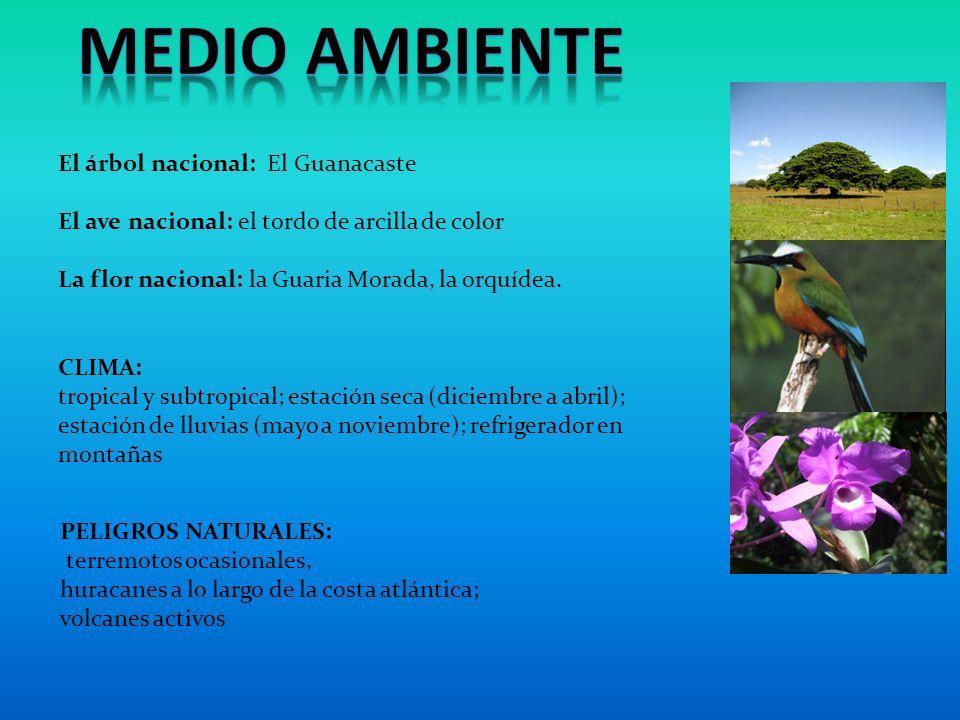 CLIMA: tropical y subtropical; estación seca (diciembre a abril); estación de lluvias (mayo a noviembre); refrigerador en montañas El árbol nacional: El Guanacaste El ave nacional: el tordo de arcilla de color La flor nacional: la Guaria Morada, la orquídea.